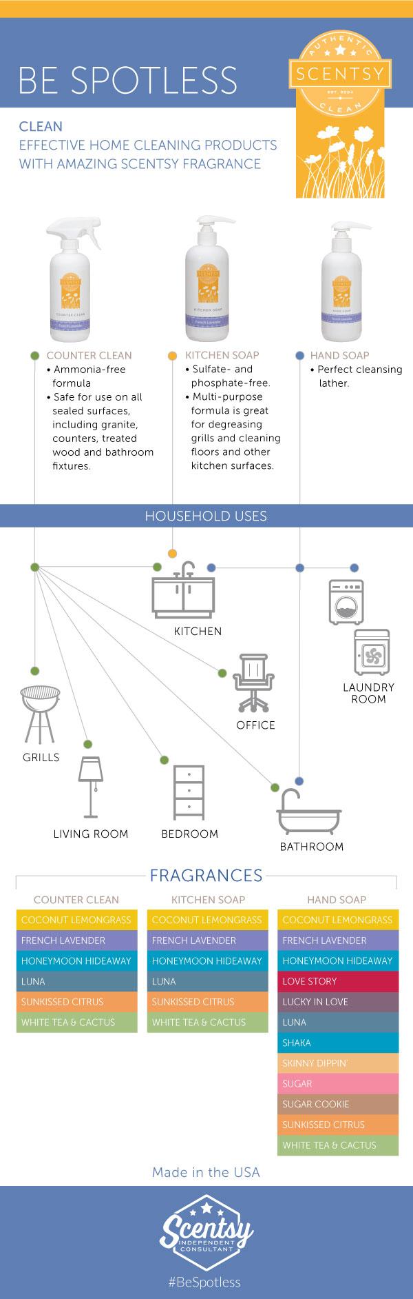 R1-EN-Clean-Infographic