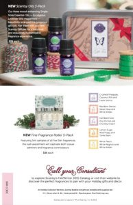 Scentsy 2015 Holiday Christmas Flyer 8