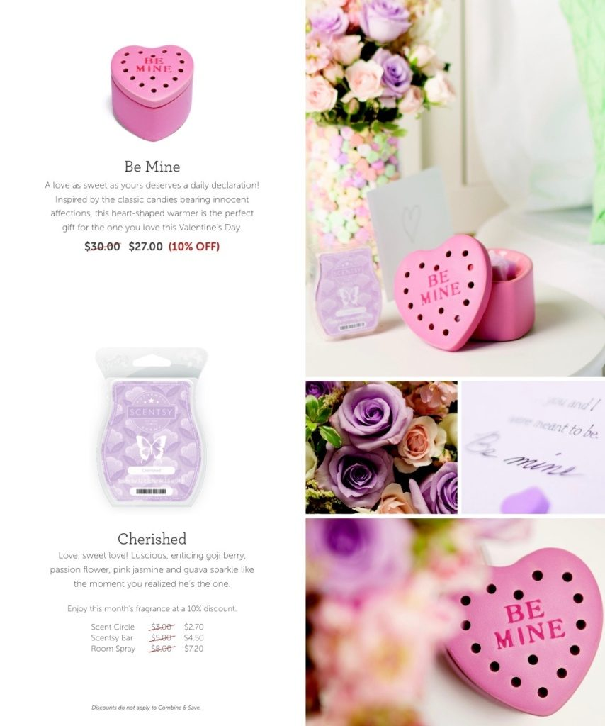 scentsyjanuary2016warmerandscentofthemonth - 2