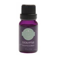 SCENTSY EUCALYPTUS ESSENTIAL OIL