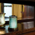 R1-Lampshade-DiamondTulip-Styled1 | Shop Scentsy Zebra Wax Warmer Deluxe