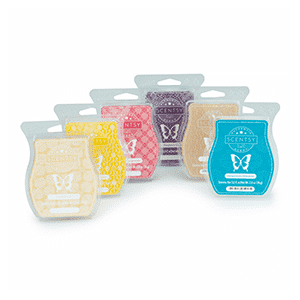 SCENTSY BARS 6 PACK – BUY 5, GET ONE FREE