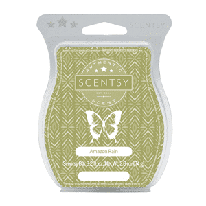 AMAZON RAIN SCENTSY BAR