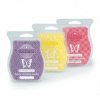 3 SCENTSY BARS COMBINE & SAVE
