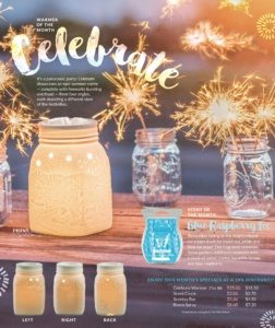 SCENTSY JUNE 2016 WARMER OF THE MONTH