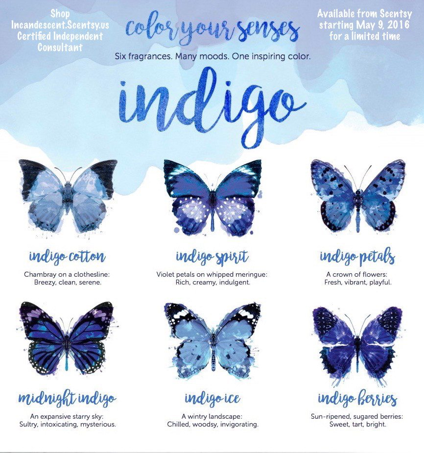 Scentsy Indigo Limited Edition Collection May 2016