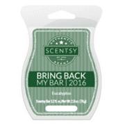 EUCALYPTUS BRING BACK MY SCENTSY BAR
