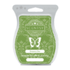 BERGAMOT BAY SCENTSY BAR
