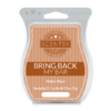 AMBER ROAD SCENTSY BAR