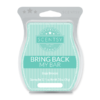 BAJA BREEZE BRING BACK MY SCENTSY BAR