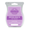 FOREVER YOURS BRING BACK MY SCENTSY BAR