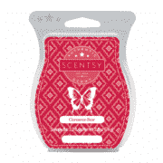 CINNAMON BEAR SCENTSY BAR