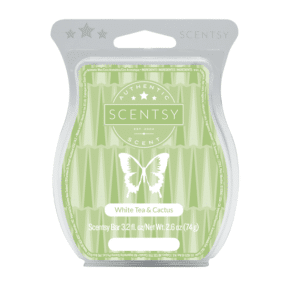WHITE TEA & CACTUS SCENTSY BAR