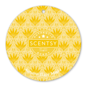 AUTUMN BLAZE MAPLE SCENTSY SCENT CIRCLE