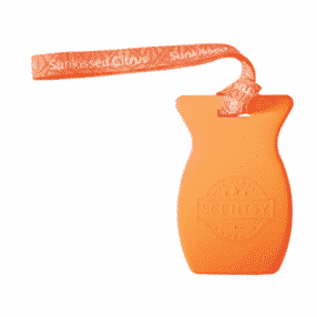SUNKISSED CITRUS SCENTSY CAR BAR