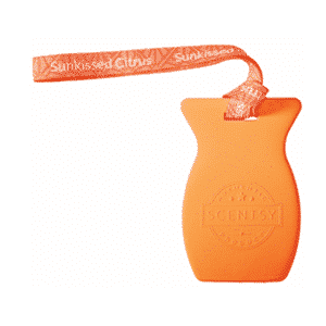 SUNKISSED CITRUS SCENTSY CAR BAR | Shop Scentsy | Incandescent.Scentsy.us