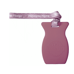 WELCOME HOME SCENTSY CAR BAR | Shop Scentsy | Incandescent.Scentsy.us