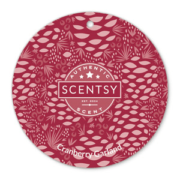 CRANBERRY GARLAND SCENTSY SCENT CIRCLE