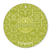 CASTING SPELLS SCENTSY SCENT CIRCLE