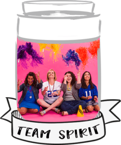 make-a-scene-giveaway-team-spirit