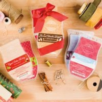 Scentsy 2016 Holiday Bricks | SCENTSY BRING BACK MY BAR 2017 WINNERS LIST - AVAILABLE January 1, 2017 | Scentsy® Online Store | Scentsy Warmers & Scents | Incandescent.Scentsy.us