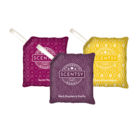 SCENTSY SCENT PAK, BUNDLE OF 3 - COMBINE & SAVE