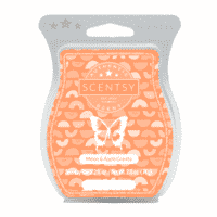 MELON & APPLE GRANITA SCENTSY BAR