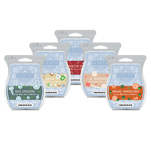 SCENTS OF THE SEASON - ALL 5 SCENTS BUNDLE $20.00