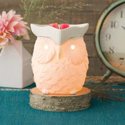 WHOOT SCENTSY WARMER WITH NEW! BIRCH WOOD CORD CONCEEALING STAND