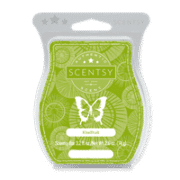 KIWI FRUIT SCENTSY BAR