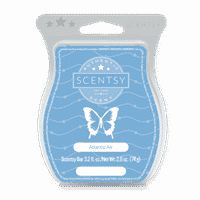 ATLANTIC AIR SCENTSY BAR