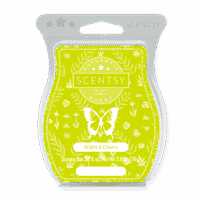 BRIGHT AND CHEERY SCENTSY BAR