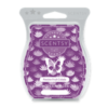 PASSION FRUIT COLADA SCENTSY BAR