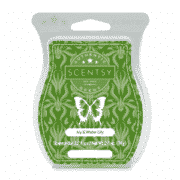 IVY & WATER LILY SCENTSY BAR