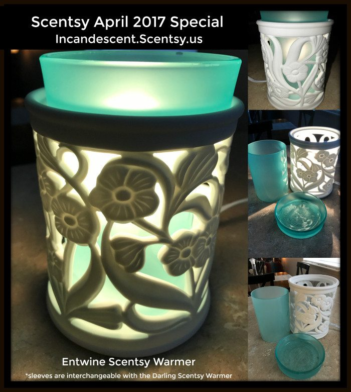 Entwine Scentsy Warmer with teal insert
