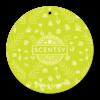 BRIGHT & CHEERY SCENTSY SCENT CIRCLE