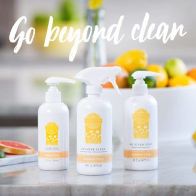 SCENTSY CLEAN PRODUCTS