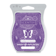 HUCKLEBERRY AND CLEMENTINE SCENTSY BAR