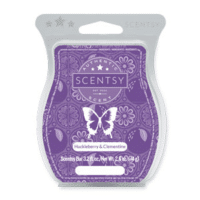 HUCKLEBERRY AND CLEMENTINE SCENTSY BAR   Huckleberry & Clementine Scentsy Bar