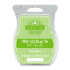 LIME SUBLIME BRING BACK MY SCENTSY BAR | LIME SUBLIME BRING BACK MY SCENTSY BAR | Shop Scentsy | Incandescent.Scentsy.us