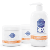 A WINK & A SMILE SCENTSY LAUNDRY BUNDLE