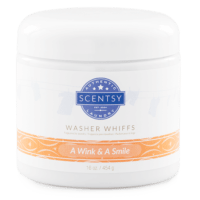 A WINK & A SMILE SCENTSY WASHER WHIFFS