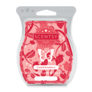 how to clean scentsy warmer with cotton ball
