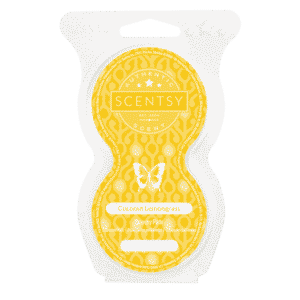 NEW! COCONUT LEMONGRASS SCENTSY GO POD BEADS | SCENTSY GO | Shop Scentsy | Incandescent.Scentsy.us