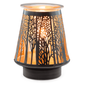 IN THE SHADOWS SCENTSY WARMER