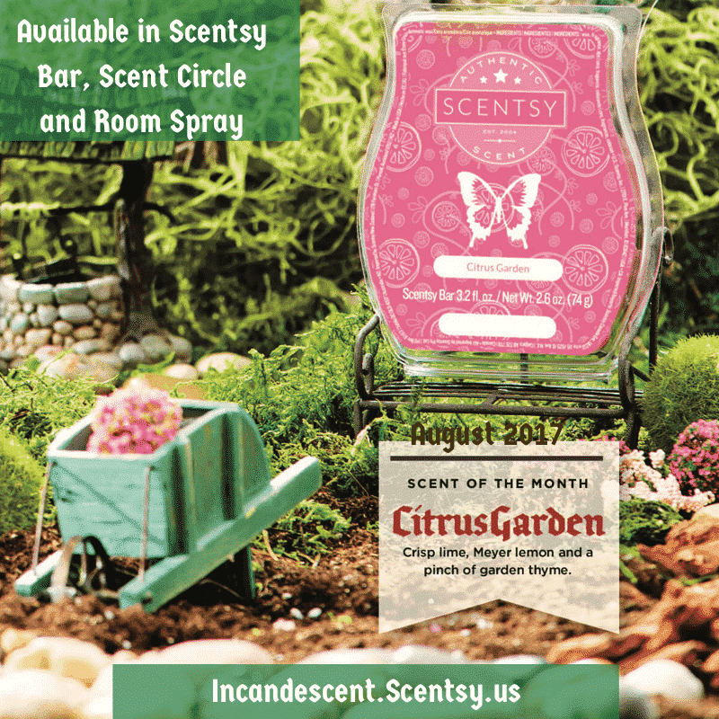 SCENTSY AUGUST 2017 WARMER AND SCENT OF THE MONTH NO. 2 ...