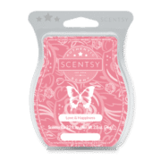 LOVE AND HAPPINESS SCENTSY BAR