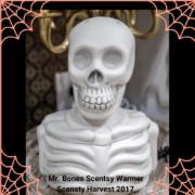 MR. BONES SCENTSY WARMER