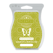 PERSIAN LIME AND SANDALWOOD NO. 48 SCENTSY BAR