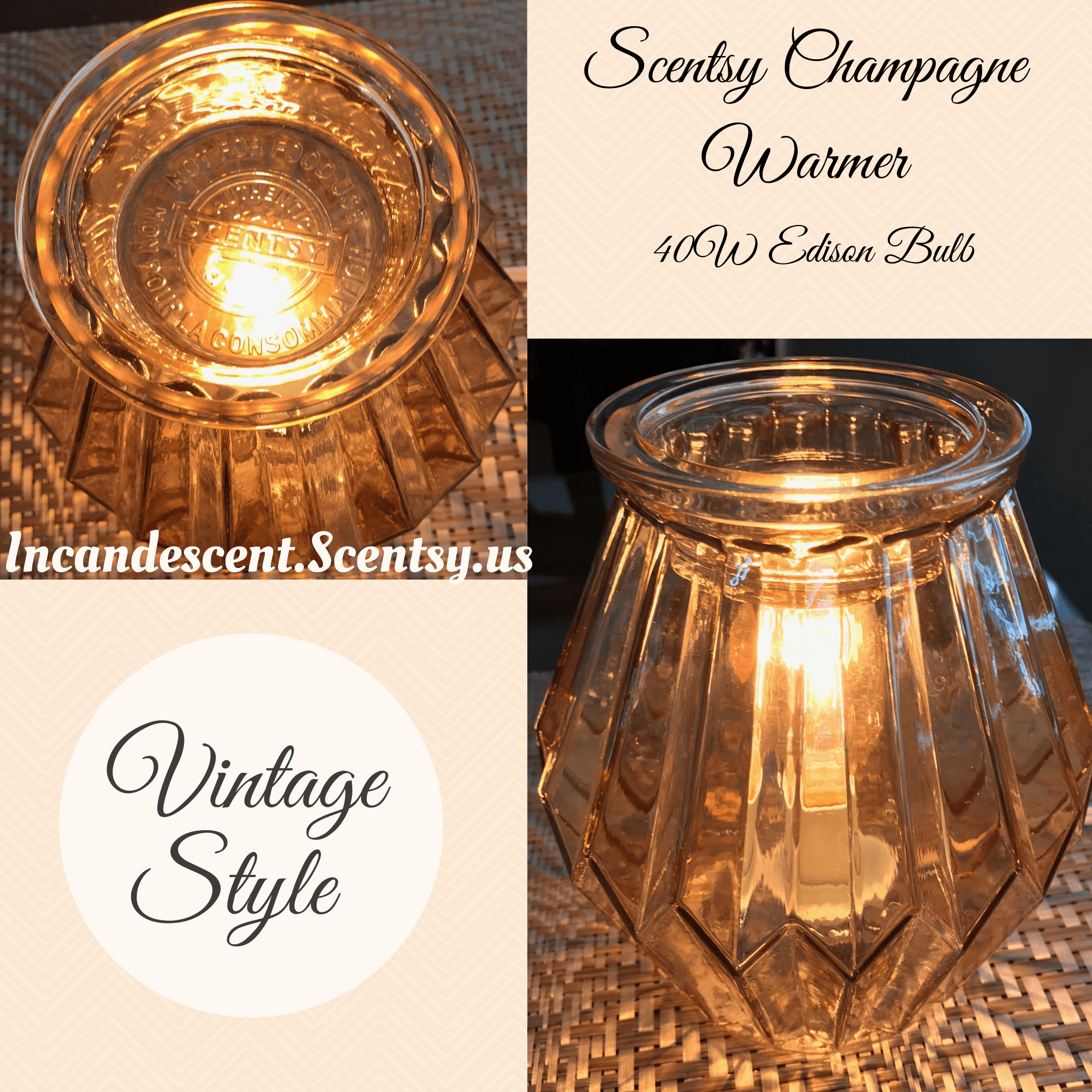 NEW CHAMPAGNE SCENTSY WARMER
